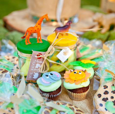 safari_theme_baptism (7).jpg