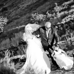 sanrotini_lavender_wedding (74).jpg