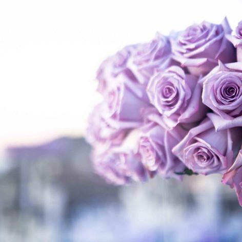 sanrotini_lavender_wedding (153).jpg
