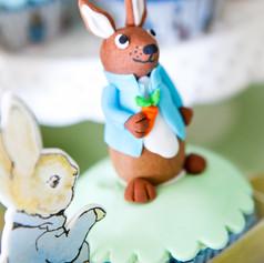 peter_rabbit_baptism (9).jpg