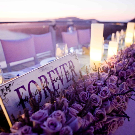 sanrotini_lavender_wedding (194).jpg