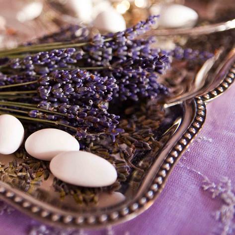 sanrotini_lavender_wedding (41).jpg