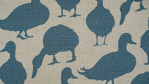 Duck Summer Sky fabric web crop.jpg