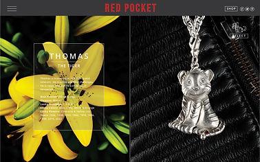 Charles Bongers + Co | RED POCKET WEB SITE THOMAS FLOWER