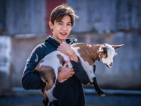 Woodfield goats.jpg