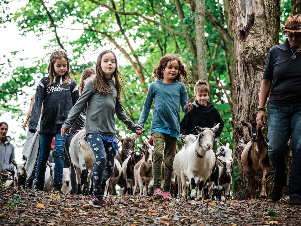kids goats holding hands 2.jpg