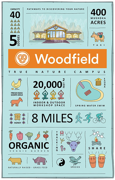 WOODFIELD LOGO INFOGRAPHIC.jpg