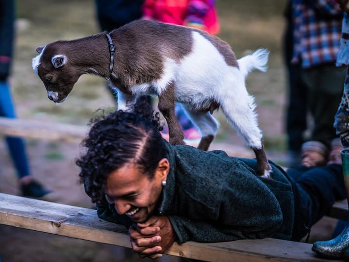Woodfield goat yoga.jpg