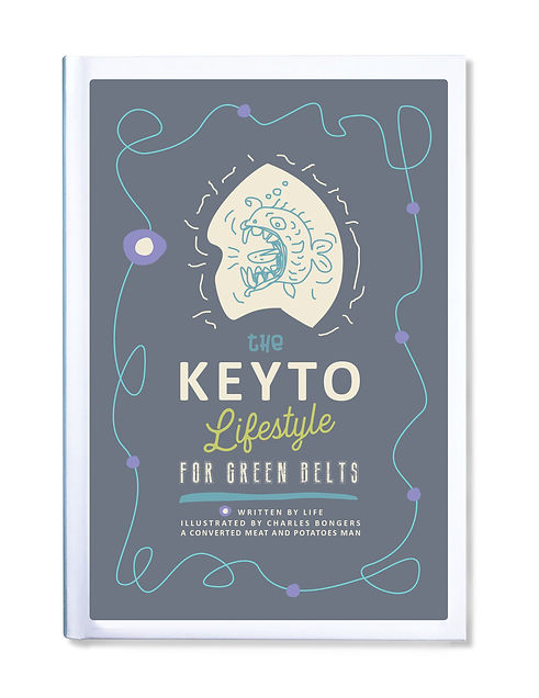 Keyto book cover.jpg