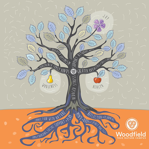 WOODFIELD TREE INFOGRAPHIC.jpg