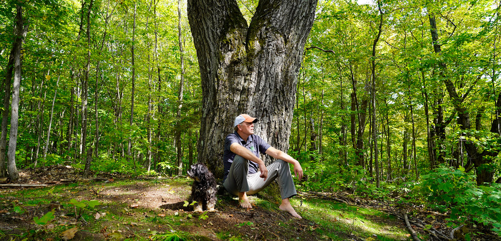 TREE WARRIOR BONGERS2.jpg