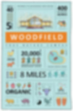 WOODFIELD INFOGRAPHIC.jpg