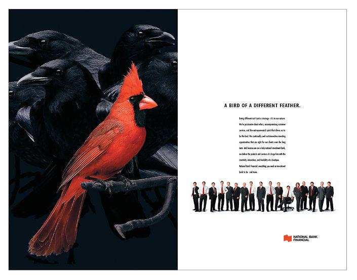 NBF Cardinal ad 10.jpg