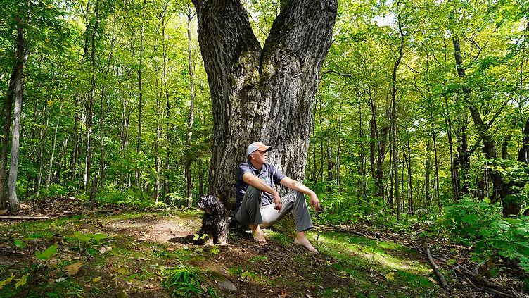 Charles Bio tree.jpg