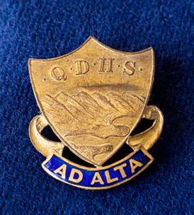 QDHS badge