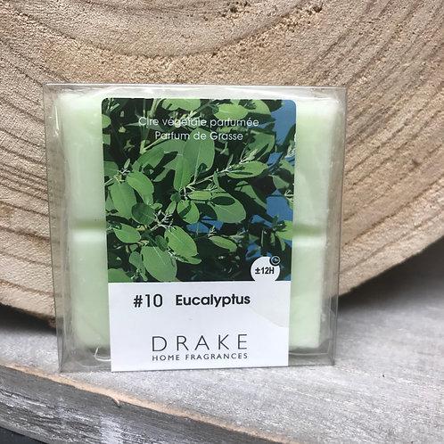 Fondant: Eucalyptus #10