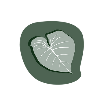 Skintology Pine Icon-01.png