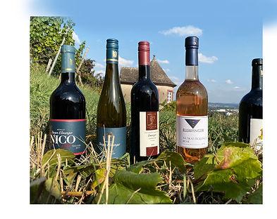 Weinhaus Binder Wein Remstal