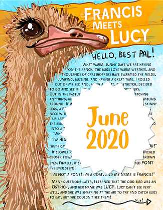 Lucy the Ostrich