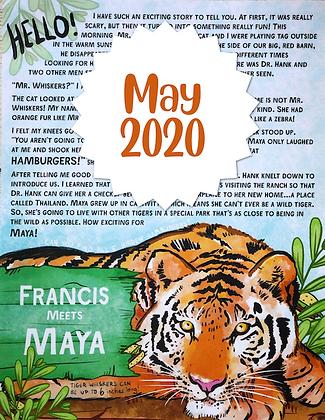 Maya the Tiger