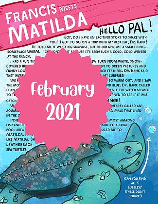 Matilda the Sea Turtle