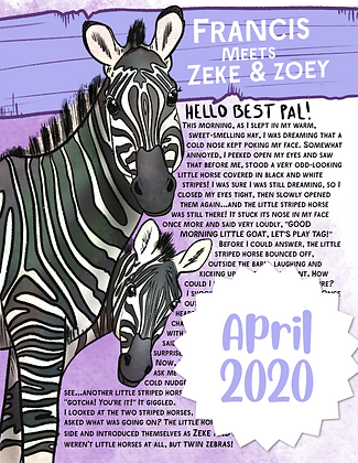 Zeke & Zoey the Zebras