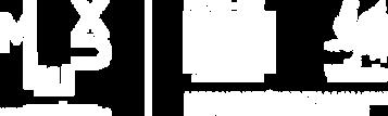 logo_FEDER_FSEWAL-negatif.png