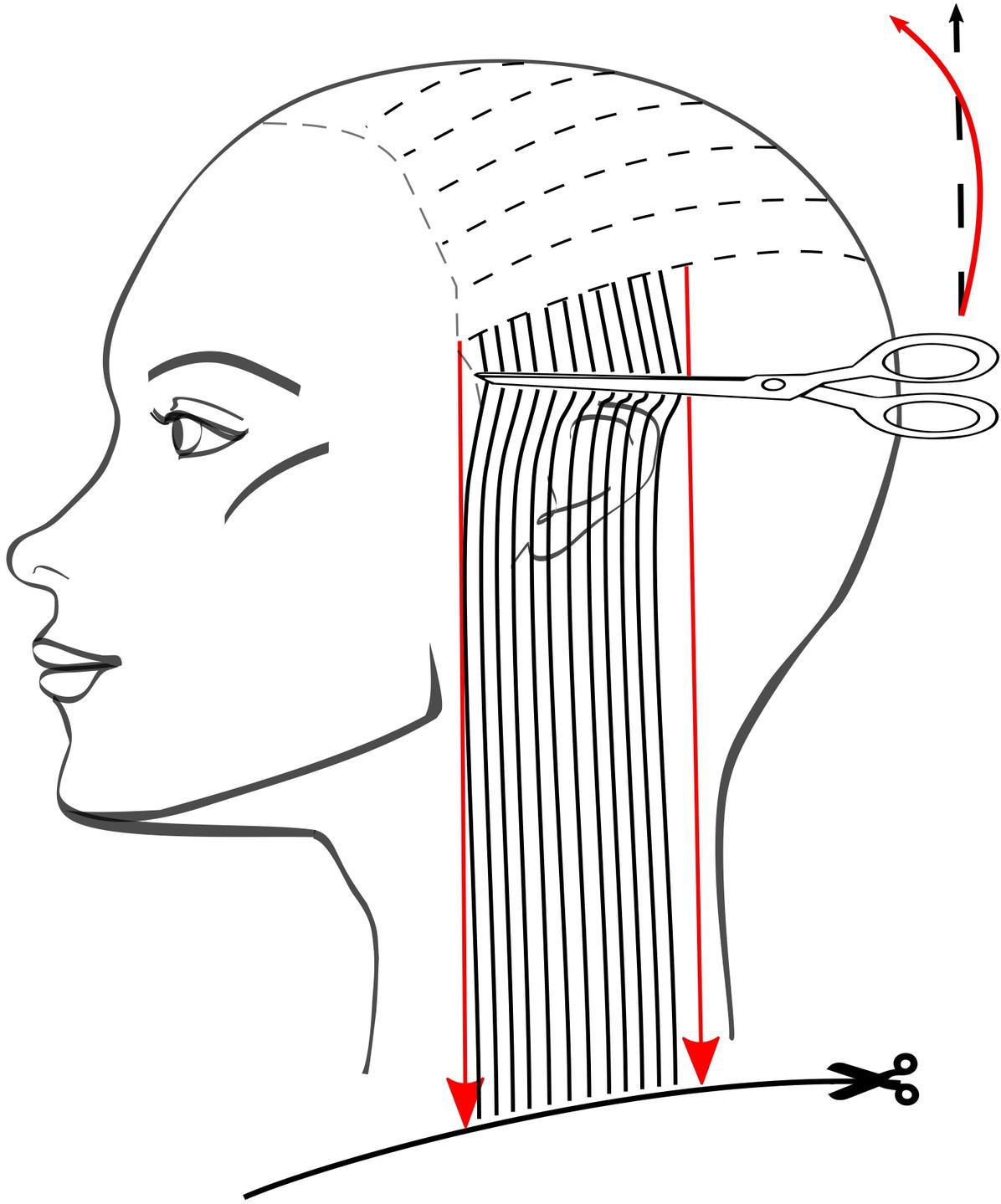 Переходим к височным зонам. Садимся с левой стороны от модели, голову наклоняем вправо. Волосы расчёсываем вниз, над ушной раковиной прядь волос продавливаем ножницами, чтобы не срезать лишнего в окантовке.