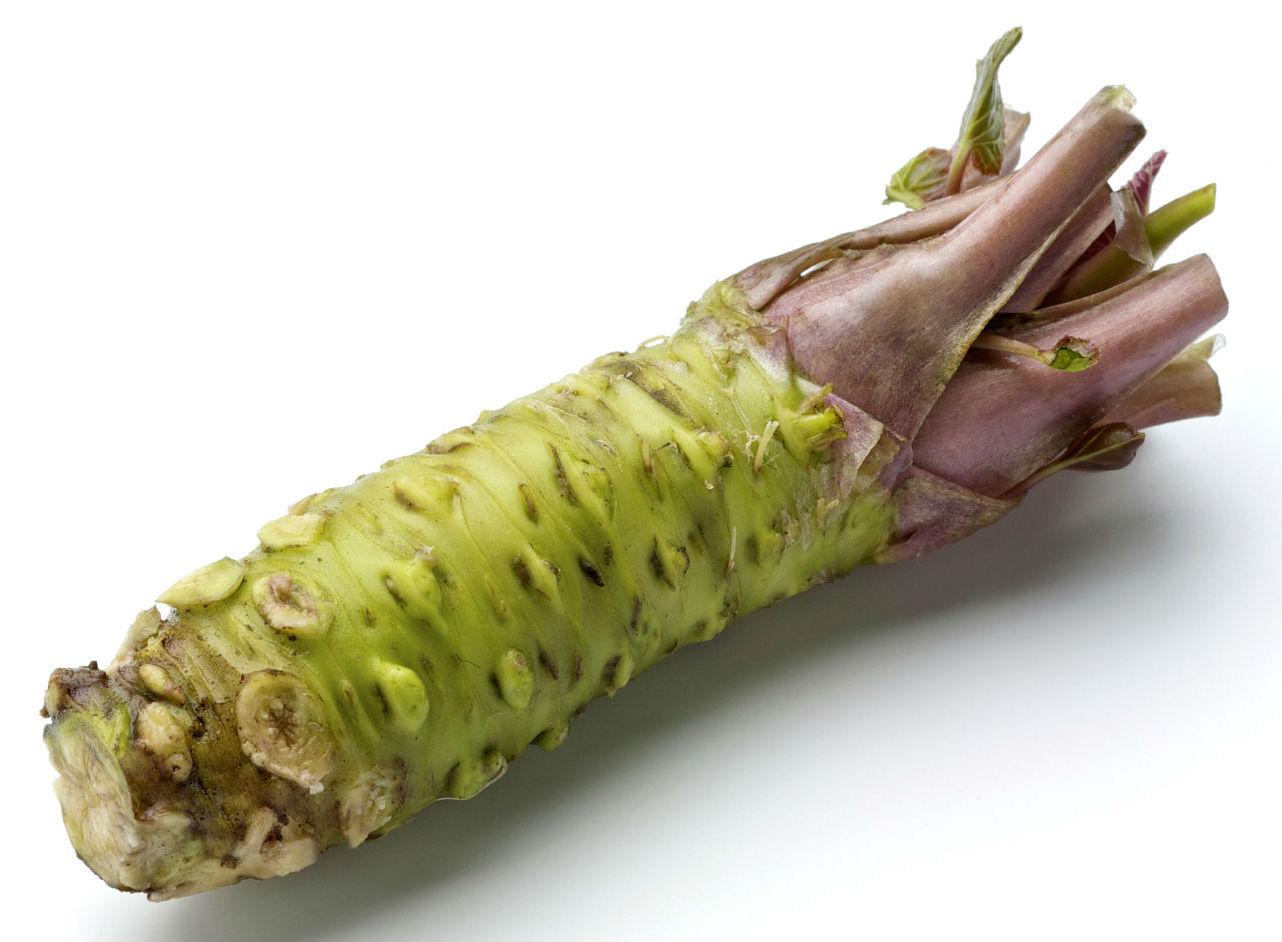 植物中的特殊物質對有氧耐力的貢獻