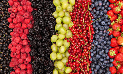 莓類水果富含有氧的基礎元素