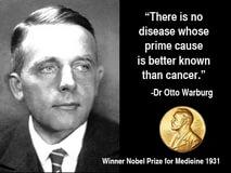 細胞代謝的導師:奧圖‧華伯格