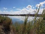 Cibola Wildlife Refuge Colorado River 3.