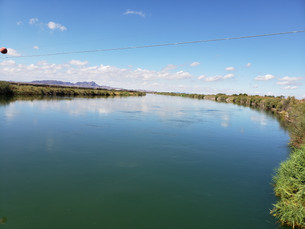 Cibola Wildlife Refuge Colorado River 14