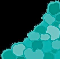 Turquiose scale pattern