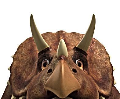 Dinosaur Stomp close up