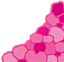 Pink scale pattern