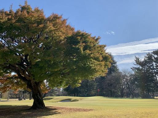 素晴らしい晴天の中での我孫子ゴルフ倶楽部。でも、今日はダメだった…。