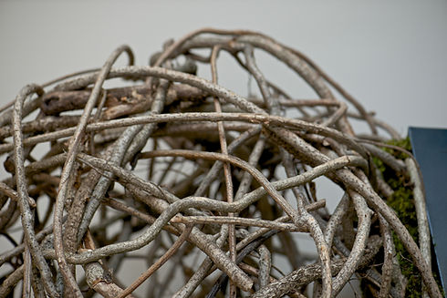 Twig Ball Detail.jpeg