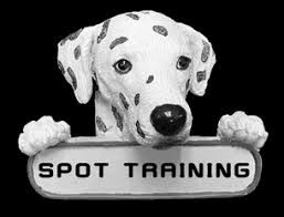 Spot Training. Fact or Fiction?