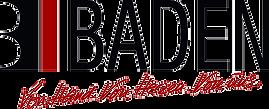 baden-logo-4c%20neu_edited.png