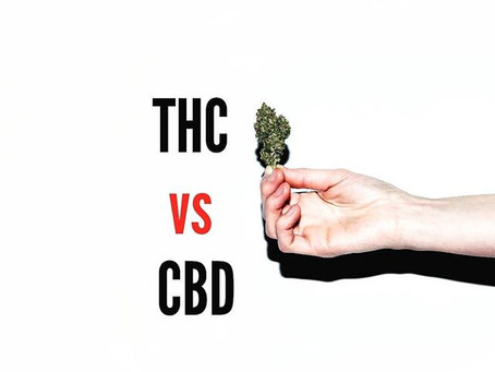 THC vs CBD - What you need to know as a patient