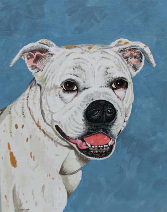 Custom Pet Portraits_1