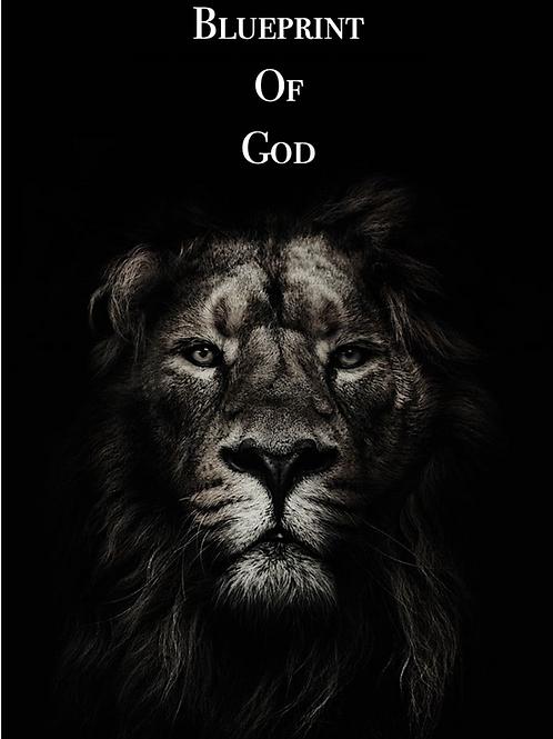Blueprint Of God (E-Book)