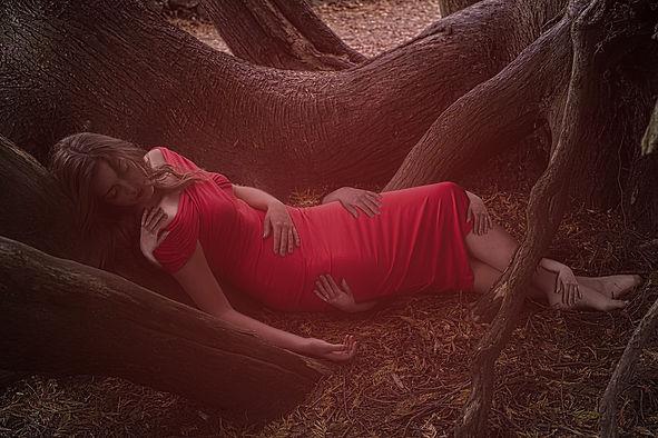 Red Dress Wolf.jpg