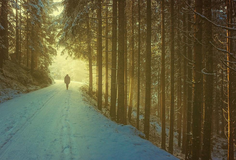 winter-1936638_1920 Edit.jpg