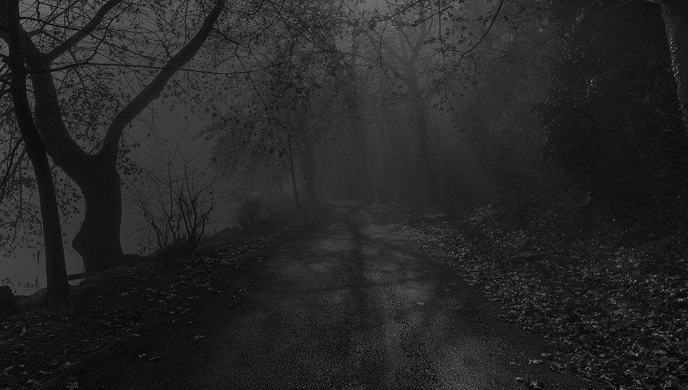 Dark Path.jpg