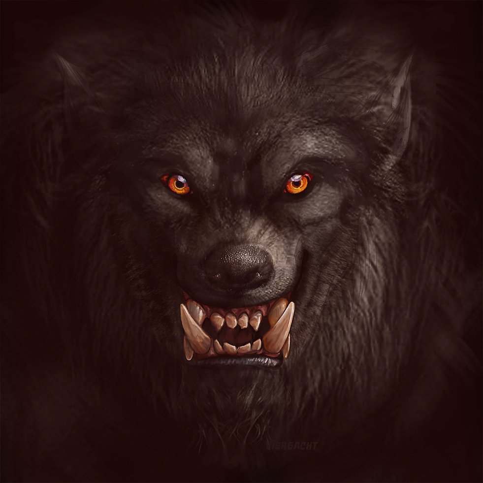 Wolf Hungry.jpg