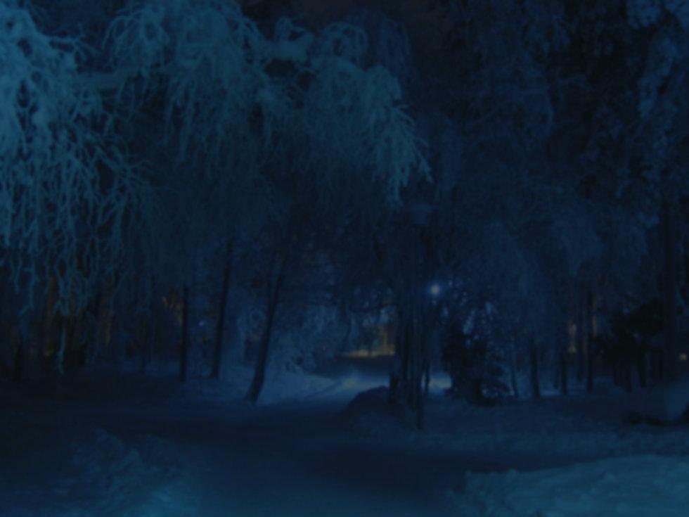 winter-69926_1920 Edit.jpg