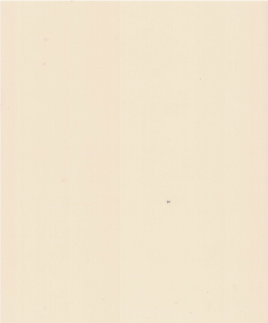 D-White-Ibis.png
