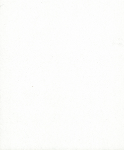 C-White-Linen.png